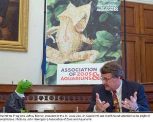 St. Louis Zoo chief Jefrrey Bonner has some one-on-one time with Kermit when the Assocation of Zoos & Aquariums brought the duo to the U.S. Capitol building to lobby for amphibian protection measures.